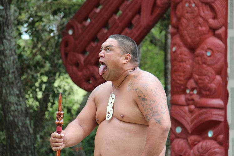 Maori Man, native to Australasia