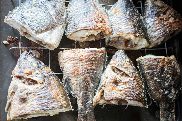 Baked tilapia directly from Volta Lake, Ghana, West Africa