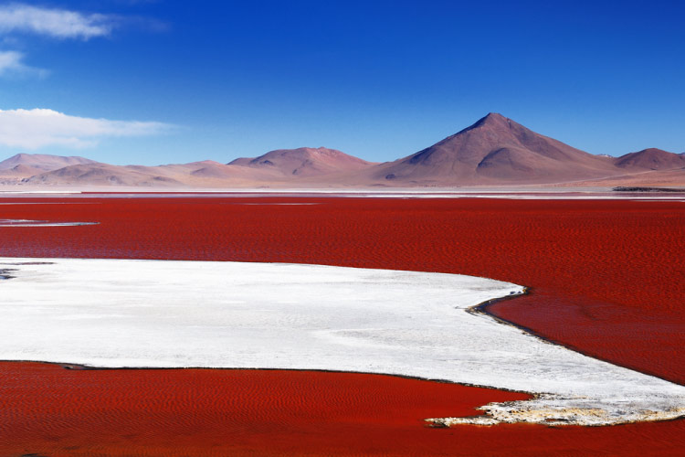 Lagoon Colorada, Bolivia in Central South America