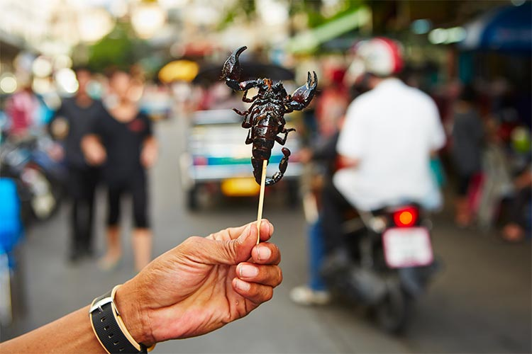 Roasted scorpion in Southeast Asia