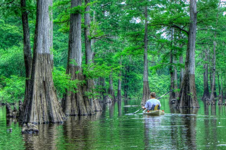 Harrell Bayou, Louisiana