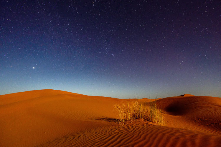 Night in the Sahara Desert