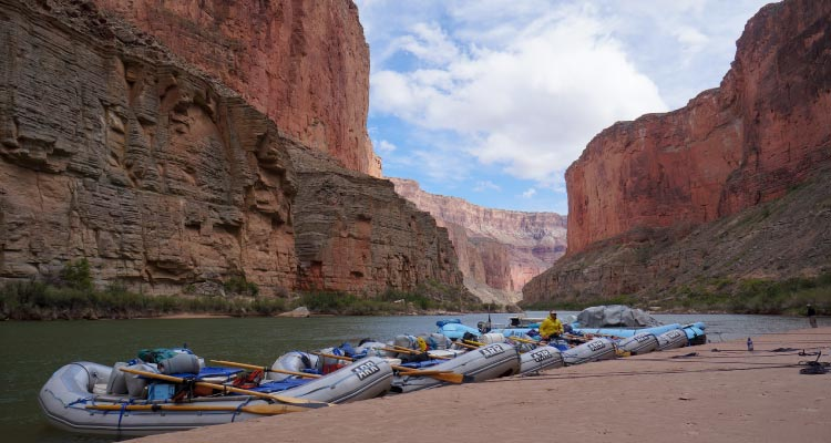 White Water Rafting lined up in the Grand Canyon