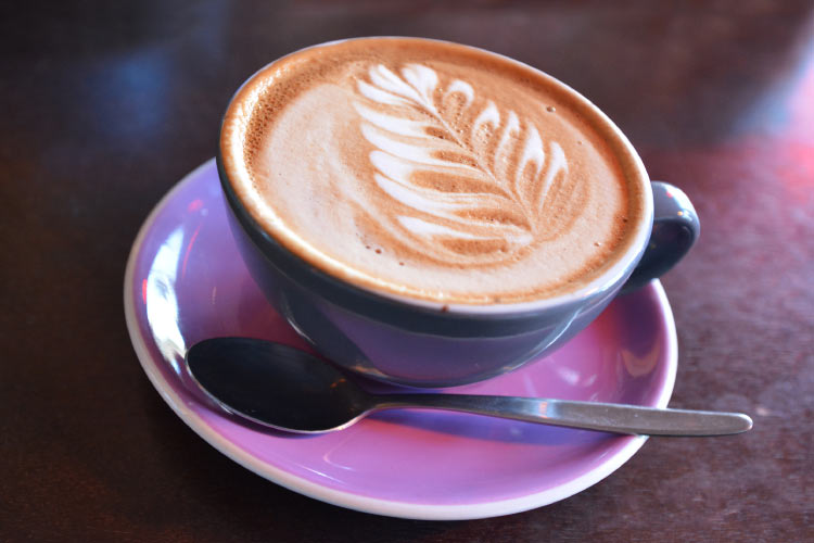 Flat white coffee decorated with the New Zealand iconic symbol the silver fern on it