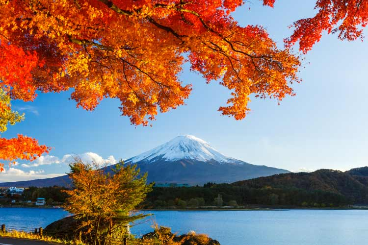 Mt Fugi in Autumn, Japan