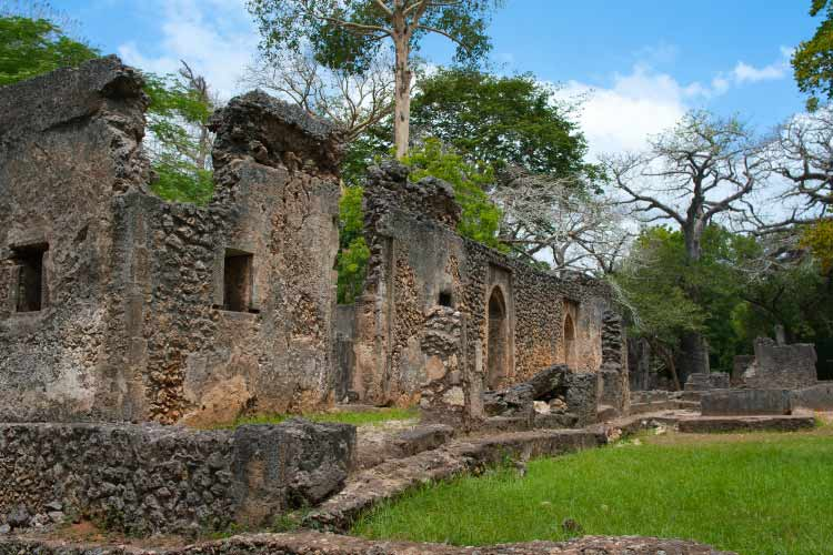 Remains of Gede, near the town Malindi