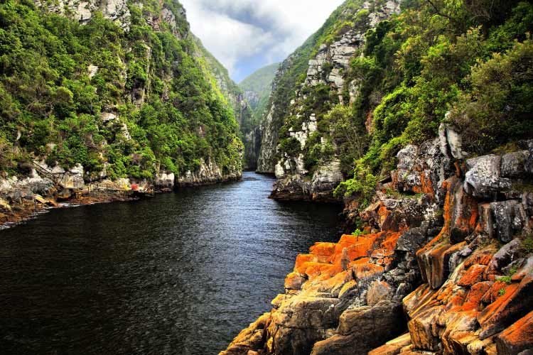 Storms River, Eastern Cape, South Africa