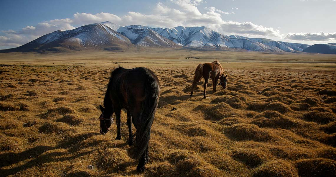 Altai, Mongolia CC-BY