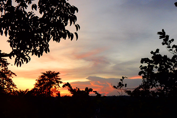 Sunset in Borneo