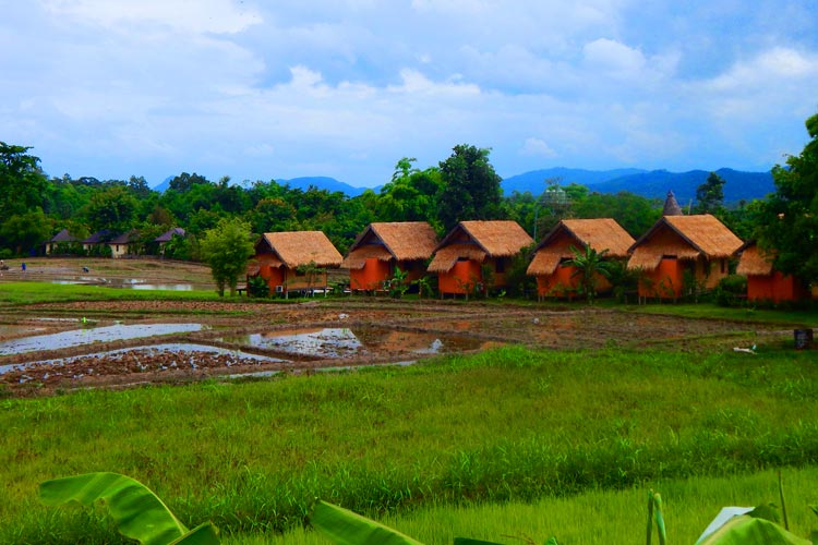 Hotels made by the Farmers in Northern Thailand