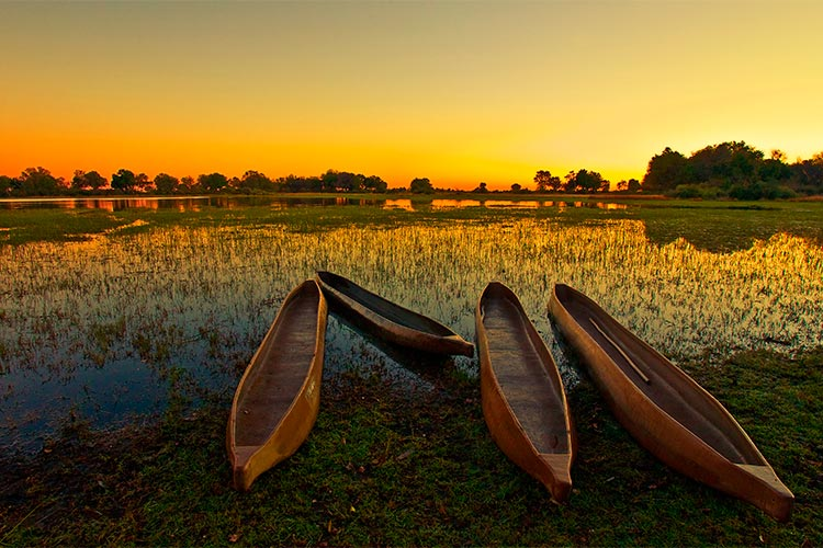Web-Sunrise-over-the-Okavango-Delta,-Botswana