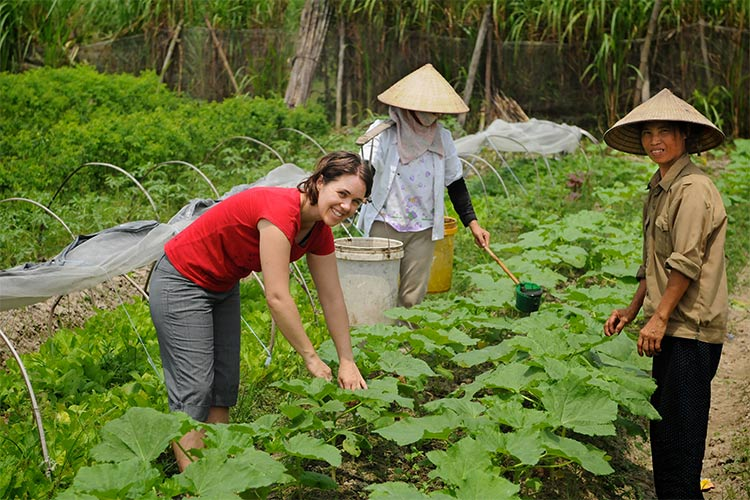 Thanh Xuan Organic project in Vietnam