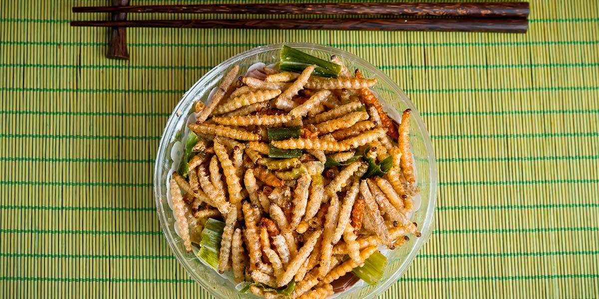 Fried bamboo larvae, a national snack in Thailand