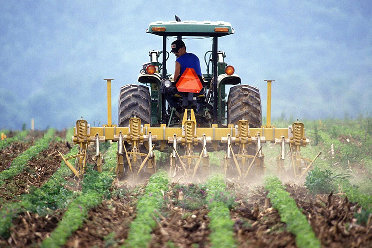 Farmer ploughing his field with his tractor