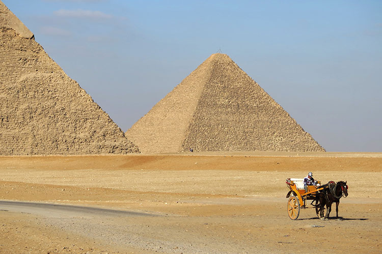 Horse-drawn carriage at the pyramids in Cairo