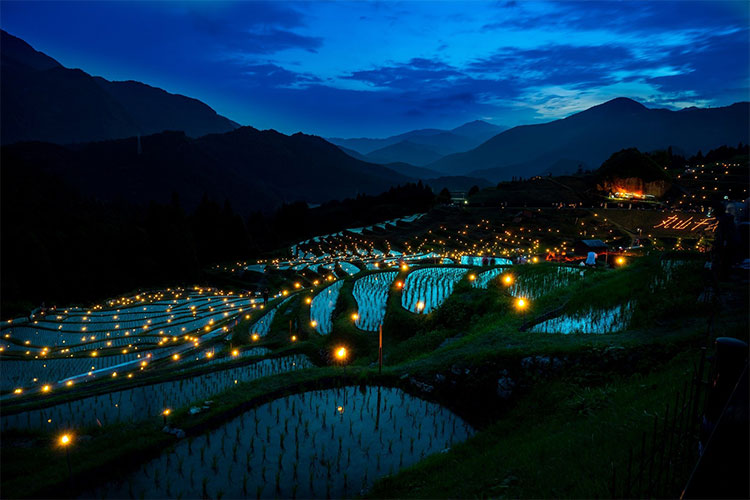 Rice terrace at night in Japan